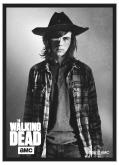 The Walking Dead Deck Protector Sleeves - Carl 50ct